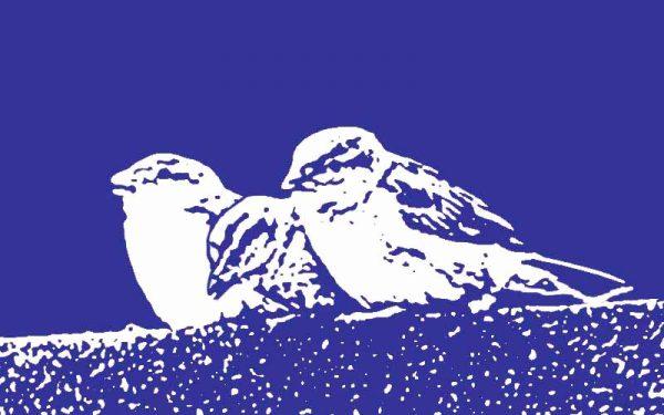 Happy Hypno Vogeljunges